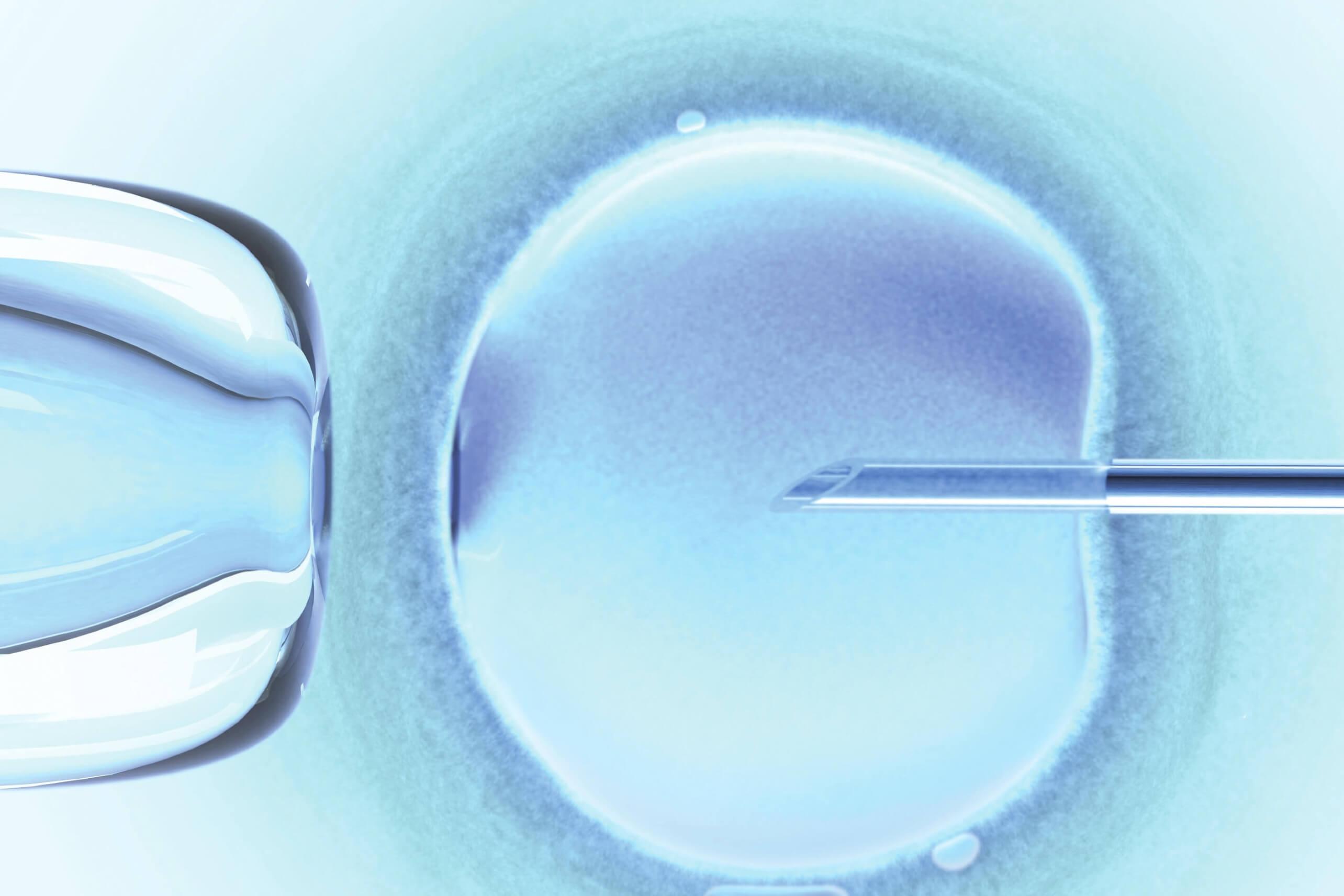 Embrion Ehsoni